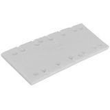 Festool SSH-115x225/10 Slipplatta